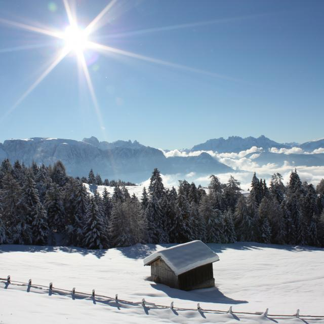 Christmas Market Bolzano Winter Holidays in South Tyrol Advent on the Renon Snow and Sun