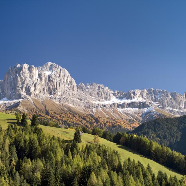 Naturehotel South Tyrol Mountains Dolomites Catinaccio Panorama